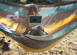 hammock testing